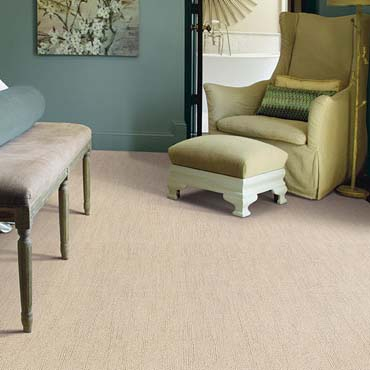 Caress Carpet by Shaw | Harrisburg, NC